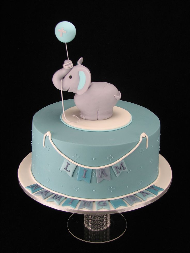A cute cake for Liam's Naming Day. The cake is chocolate mud with chocolate ganache and covered in fondant. There is also piped royal icing dots around the cake for more detail. The elephant is fondant covered rice-bubble/marshmallow mix.