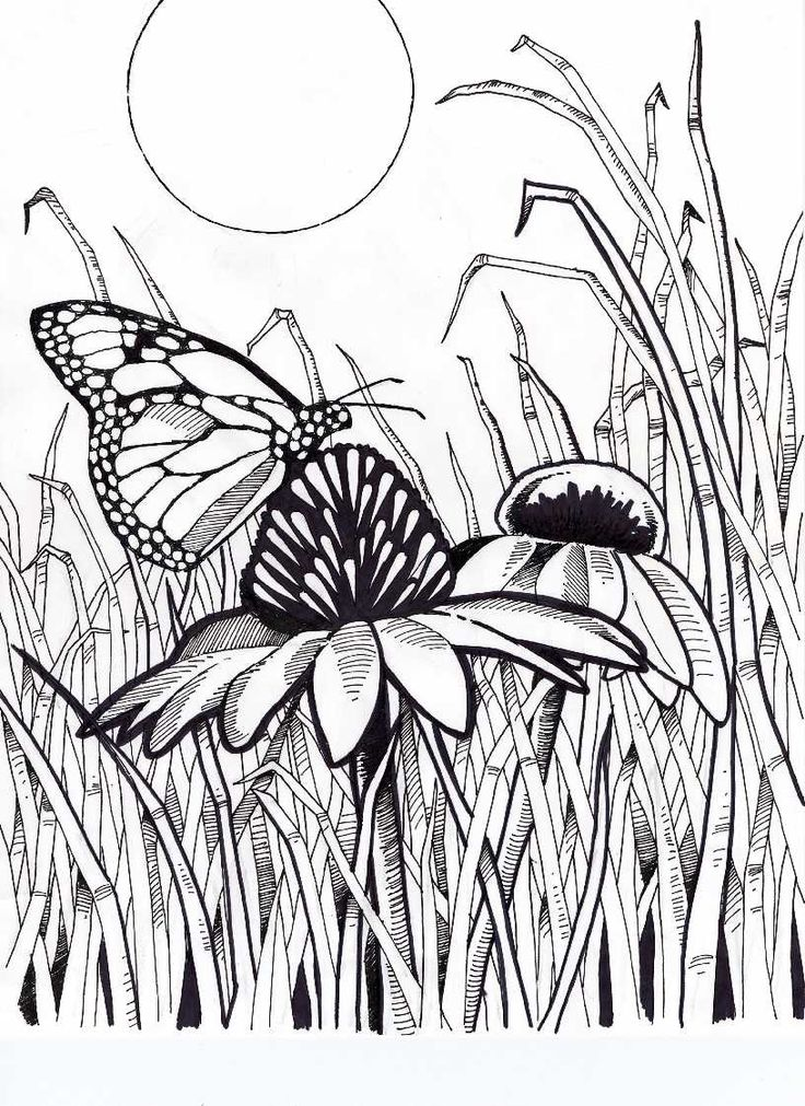 232 Best Bee Line Drawing Images On Pinterest