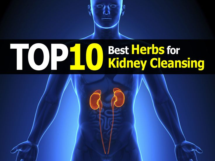 The 10 Best Herbs for Kidney Cleansing Approved By Global Healing Center