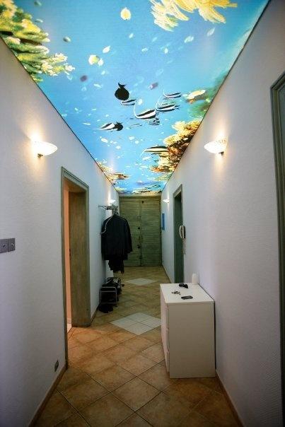 techo de pasillo impreso y translúcido