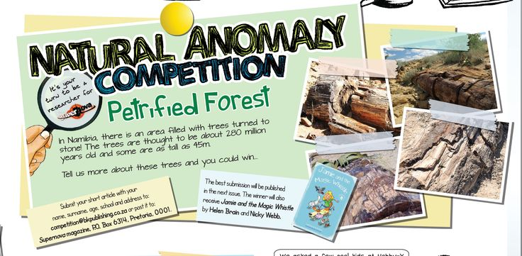 Win a copy of 'Jamie and the Magic Whistle' by Helen Brain and Nicky Webb. Enter our Natural Anomaly competition today! T's and C's apply.  #Supernovamagazine #competition #NaturalAnomaly