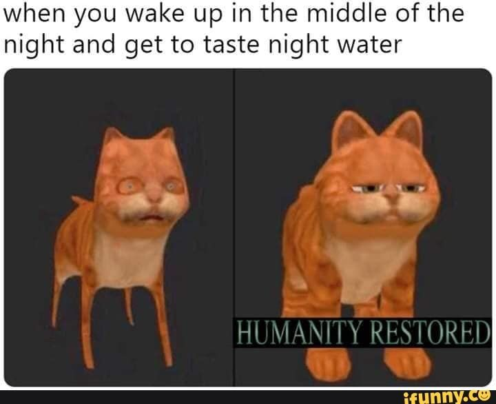 When You Wake Up In The Middle Of The Night And Get To Taste Night Water Ifunny Dark Souls Meme Dark Souls Funny Memes