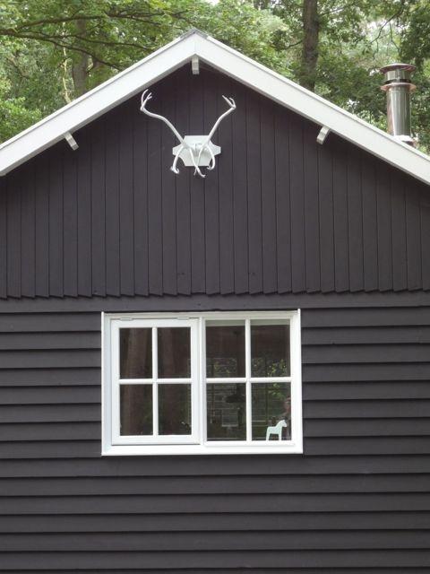 6 persoonshuis! Blijf op de hoogte van vakantiehuis Boshuis Nij Hildenberg   Boshuis Nijhildenberg Appelscha Friesland
