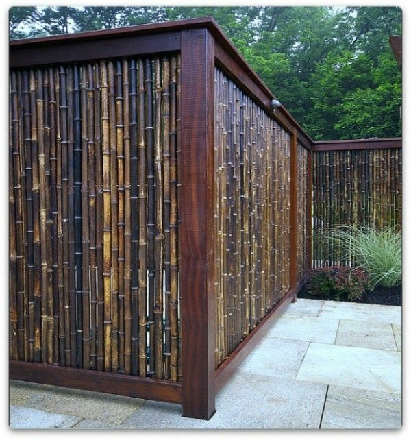 82 best images about fences on pinterest vinyls fence for Natural privacy fence
