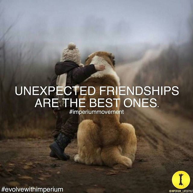 Inspirational Quotes About Friendships: 1000+ Unexpected Friendship Quotes On Pinterest