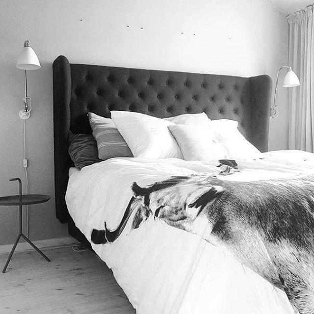 WEBSTA @ ilvabolig - Ugens regram. 👀💕 Vi elsker måden @made.by.mee formår at kombinere det simple look med vores romantiske Contessa sengegavl. Sådan et soveværelse drømmer de fleste vidst om. Vi gør i hvert fald! #regram #ilvabolig #godstil #detaljer #sengegavl