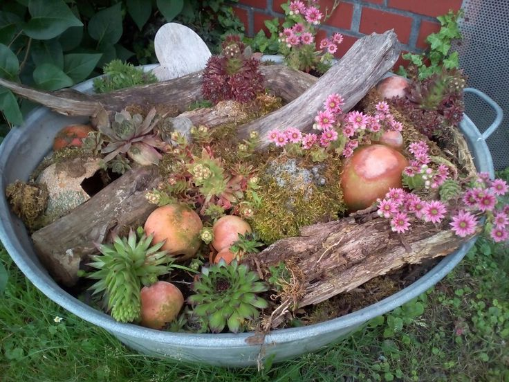 Zinkwanne bepflanzt garten pinterest gardens garten and succulent wall - Zinkwanne weihnachtlich dekorieren ...