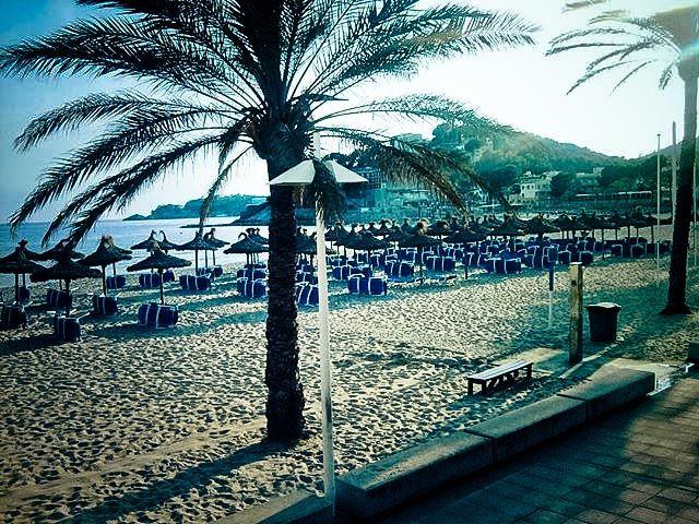 Es gibt Zeiten, da hat man den Strand für sich allein #paguera