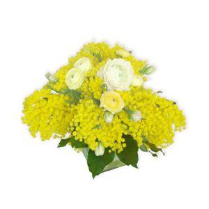 MI04-Centrotavola-di-mimosa-e-ranuncoli.jpg (300×300)