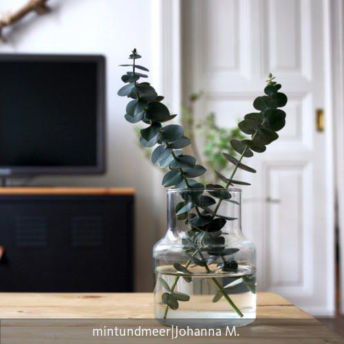 134 best Urban Jungle Wohnen mit Pflanzen images on Pinterest - pflanzen dekoration wohnzimmer