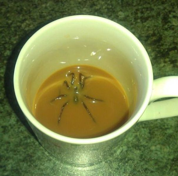 NOPE NOPE NOPE NOPE NOPE NOOOOOOOOOOOOPPPPEEE! Oh my god....I don't ever want to drink coffee again o.0