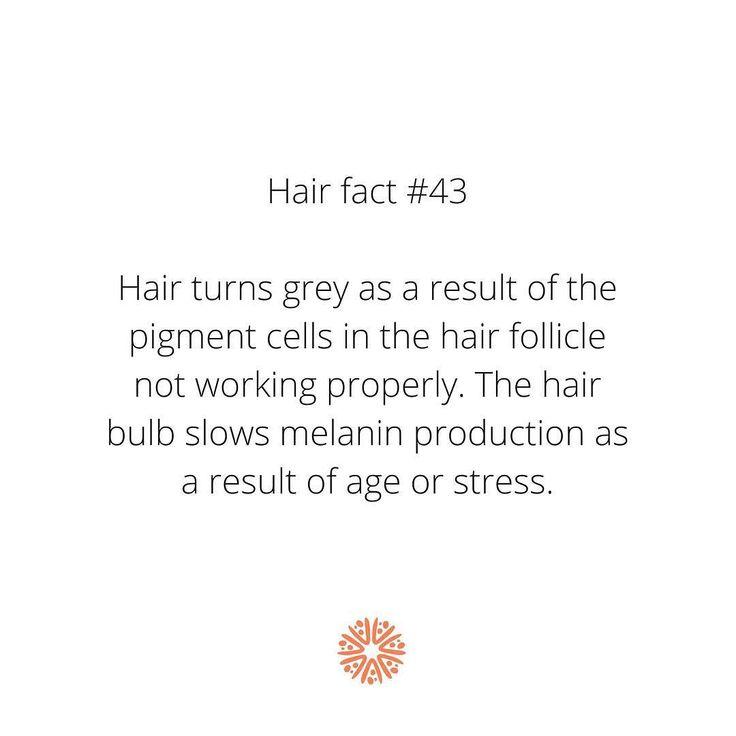 #trichovedic #hairwisdom #luxuryhaircare #hairfacts