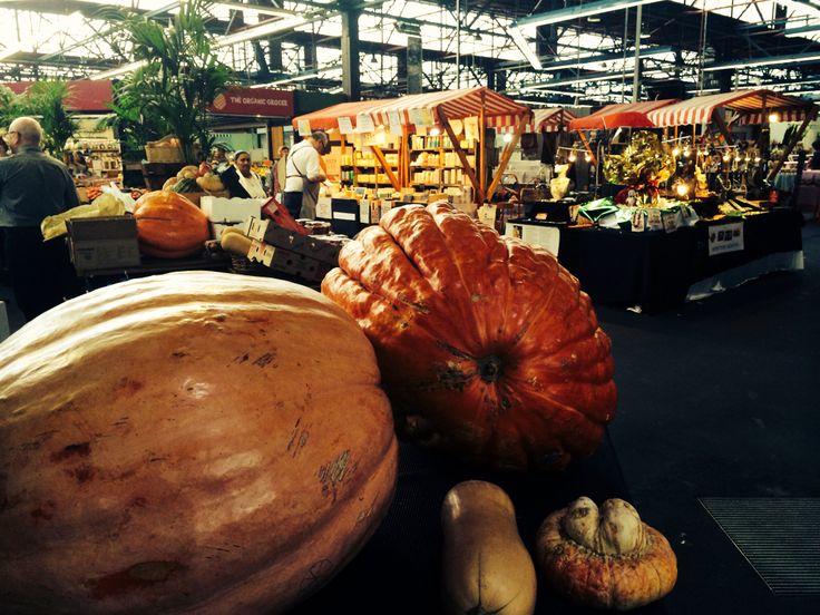 BIG, BIG, Pumpkins. Prahran Market Melbourne Australia