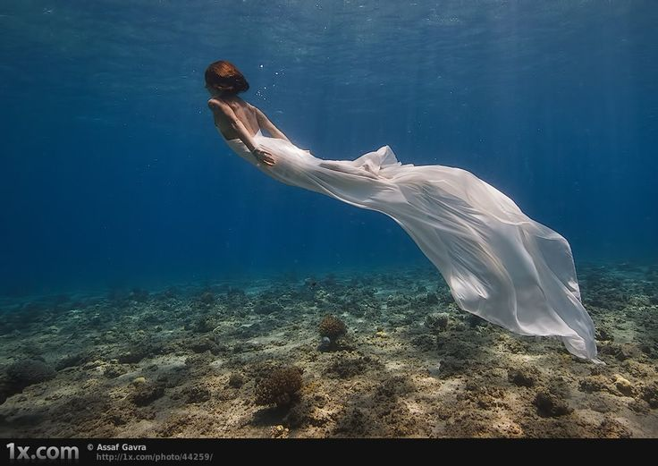 17 Best images about Mermaids on Pinterest | Real mermaid ...