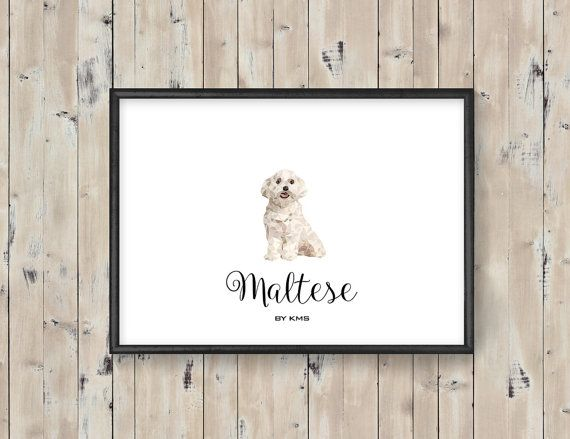 MALTESE dog printable. White maltese cute DOG by KeepMakingSmiles