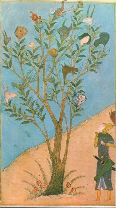 A mythical tree, a vak-vak (or talking) tree.   The limbs of this type of tree terminate in the heads of different animals as well as humans.  The heads purportedly talked.  The image above (from a Persian miniature)  illustrates the legend that such a tree informed Alexander the Great of his early death.    (namopanik)