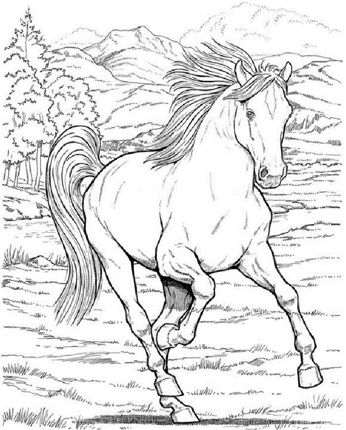 Schöne Ausmalbilder Pferde 03 Basteln Pinterest