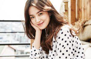 Song Hye Kyo Punya Anjing-anjing Lucu