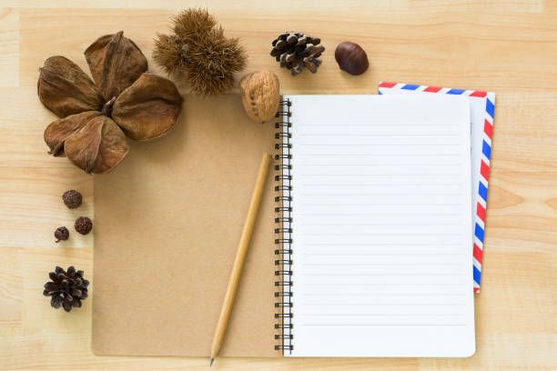 blank notebook with airmail envelope dried pine cone chestnut walnut
