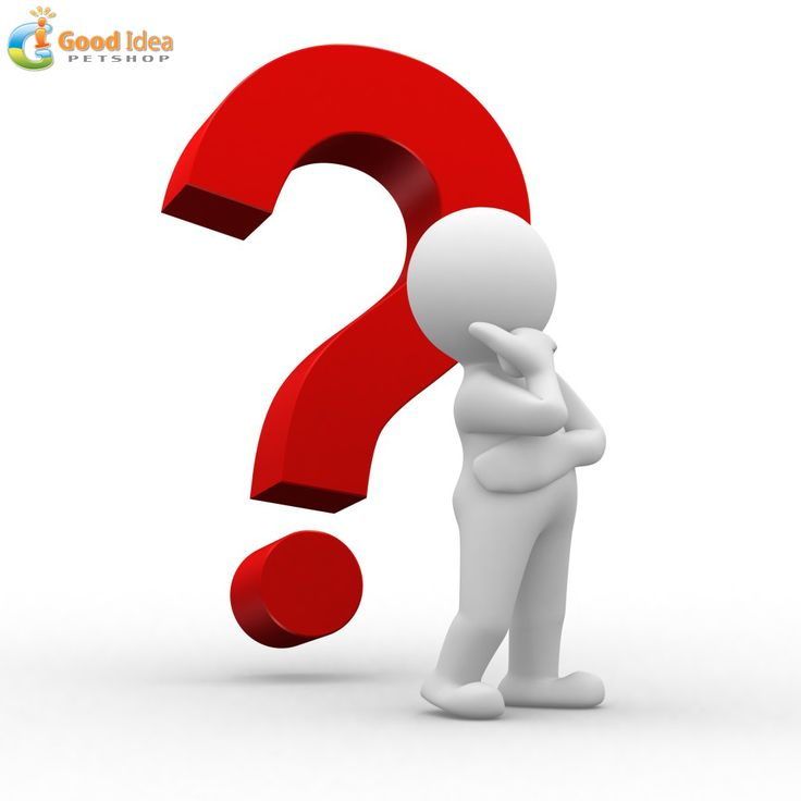 #QuestionOfTheDay    What brand of #Dog  / #Cat  food do you buy?