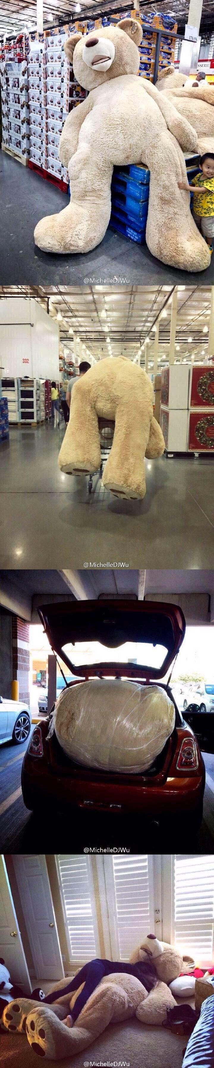 The life of a stuffed bear / La vida de un oso de peluche.