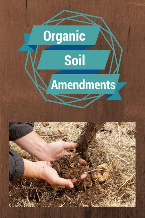 Organic Soil Amendment 101