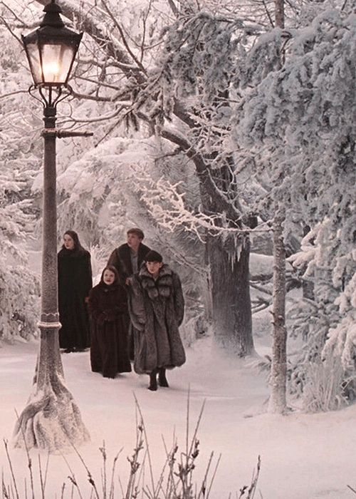 Scene from The Chronicles of Narnia - The Lion, The Witch & The Wardrobe