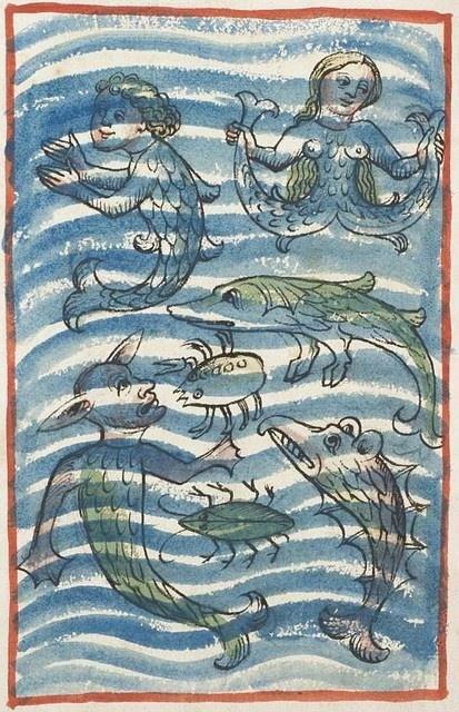From the 'Buch der Natur von Konrad von Megenberg' , Germany , ca. 1460 (Heidelberg Universitätsbibliothek Cod. Pal. germ. 311, fol. 160v) Voir la traduction