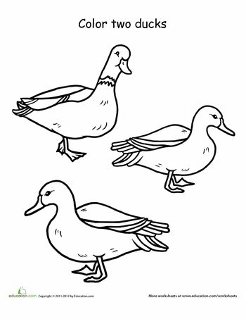 Memory Bear Pattern Free moreover 371631787611 together with Warburn Estate 1164 Limited Release besides Referenties moreover Ducks. on best quality door s