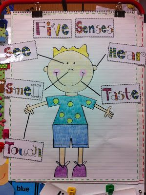 My Five Senses and great blog! labeling the parts of our body we use to see, smell, taste, hear, and touch.