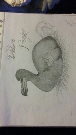 A DoDo bird :D