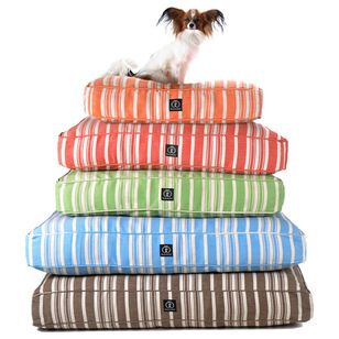 Transitional Dog Beds by Bliss Home & Design