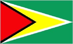 Guyana/Guyanese Flag 5ft x 3ft(100% Polyester) With Eyelets For Hanging. http://www.novelties-direct.co.uk/guyana-flag-5ft-x-3ft-100-polyester-with-eyelets-for-hanging.html
