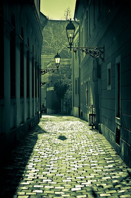 Some things never change (this street in the Buda castle in Budapest, Hungary, dates back hundreds of years, but the photo was taken in 2011!)