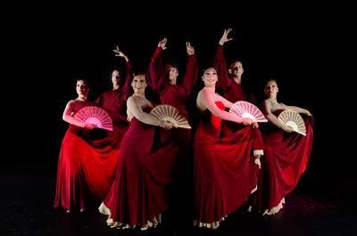 Цены на костюмы фламенко в малаге