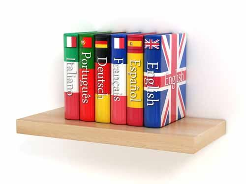 Swedish and Dutch added to our online language training portfolio.The courses are being conducted by language teachers from best of the universities around the globe at fraction of the cost.