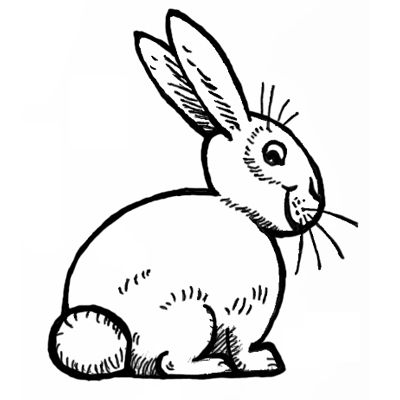 Step Square Bunnyrabbit How To Draw Bunnies With Easy