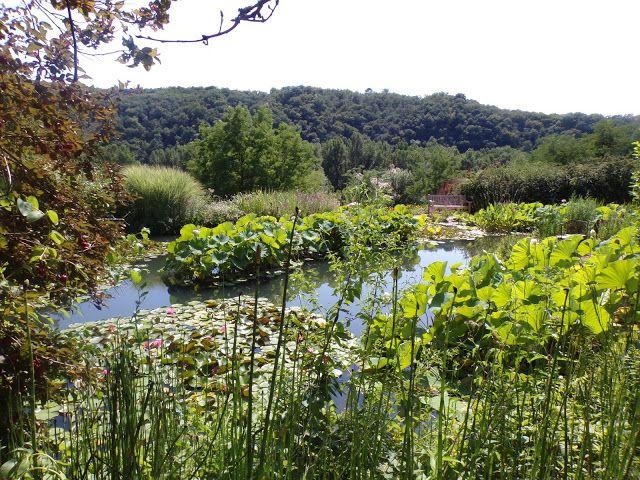 Les Jardins D Eau Pres De Sarlat En 2020 Jardin D Eau Joli