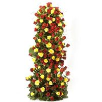 A Beautiful arrangement of 100 Red & Yellow roses with lots of fillers & greens with a approximate height of 3-4 ft height. http://www.fnp.com/flowers/midnight-delivery/endless-love-midnight/--clI_2-cI_1089-pI_17475-i_17475.html
