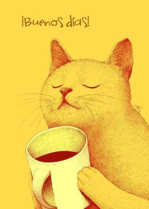 Mornig Coffee Cat