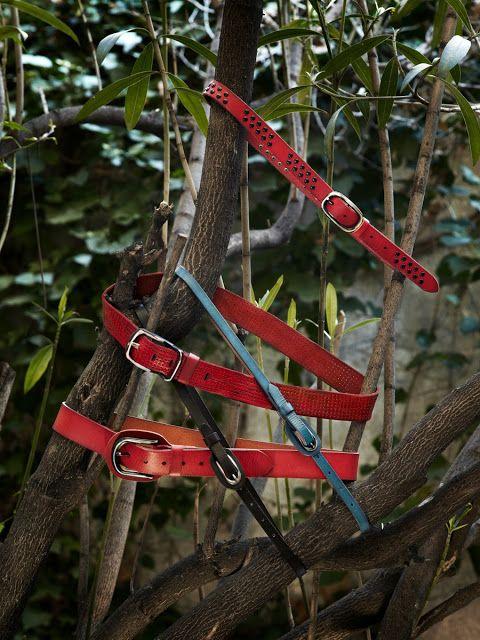 Cinturones Abbacino