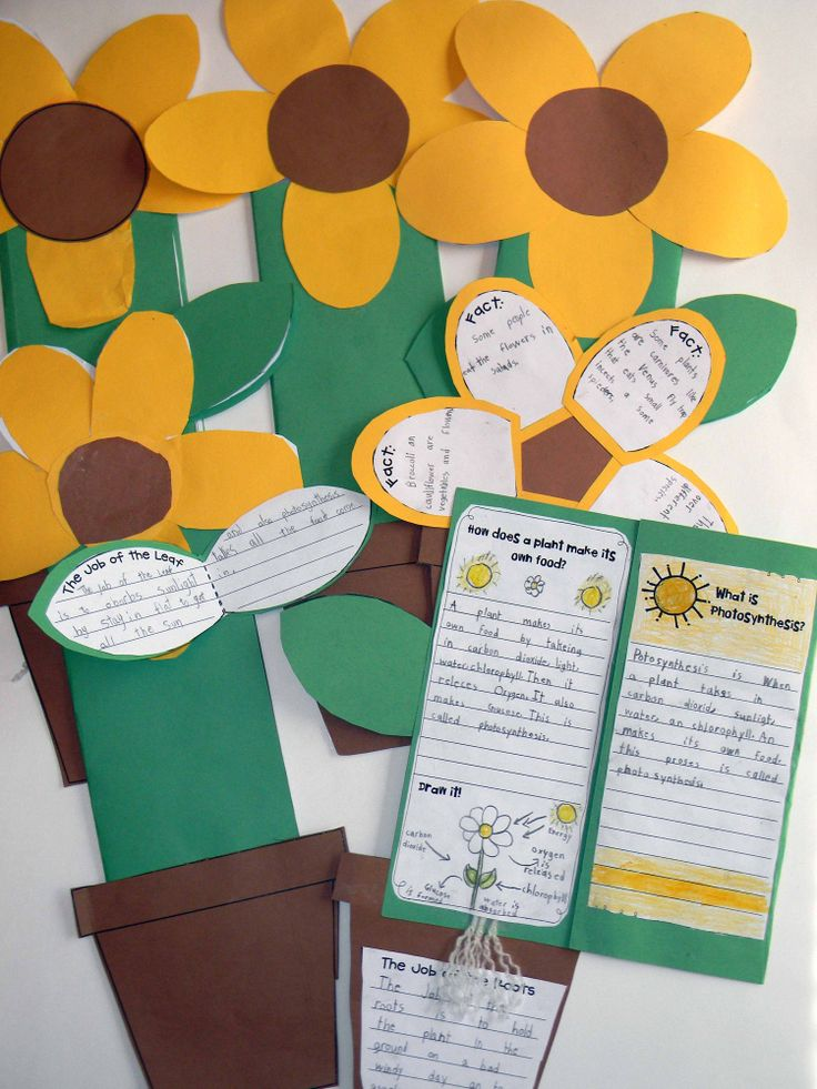Incorporating writing and art (Van Gogh's sunflower painting) into science.