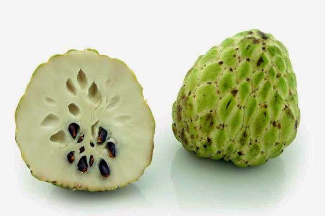 هل تعالج فاكهة القشطة مرض