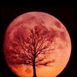 Luna Rossa o Luna del Sangue perché raggiunge la pienezza nella stagione della caccia e anticamente cacciare era necessario alla sopravvivenza delle tribù o delle famiglie.
