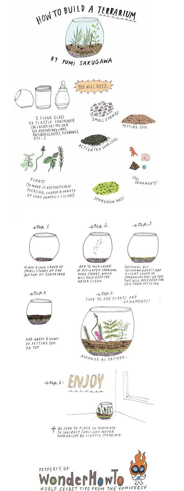 Do you have a green thumb but an extremely limited living space? Try building your own DIY terrarium. All you need is a clear glass or plastic container, a few of your favorite plants, and some cheap gardening supplies to start your own self-contained, self-sustained miniature garden. The best part about making your own terrarium is that the sky is the limit for how it can look. You can grow plants in old pickle jars, fish bowls, apothecary jars, disc spindle cases, antique vases, mason…