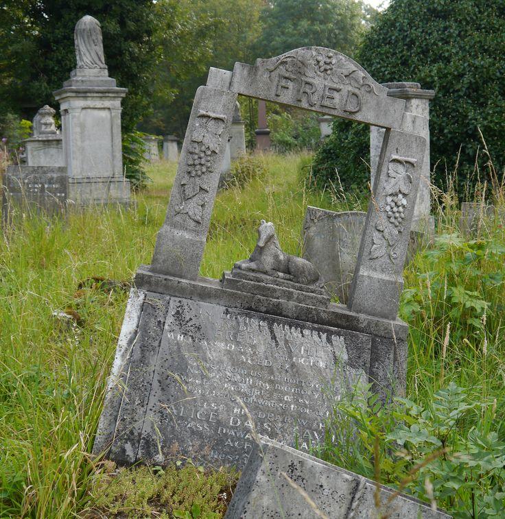 https://flic.kr/p/dxvEw9 | Tower Hamlets Cemetery Park | Tower Hamlets Cemetery Park, London, UK - September 11