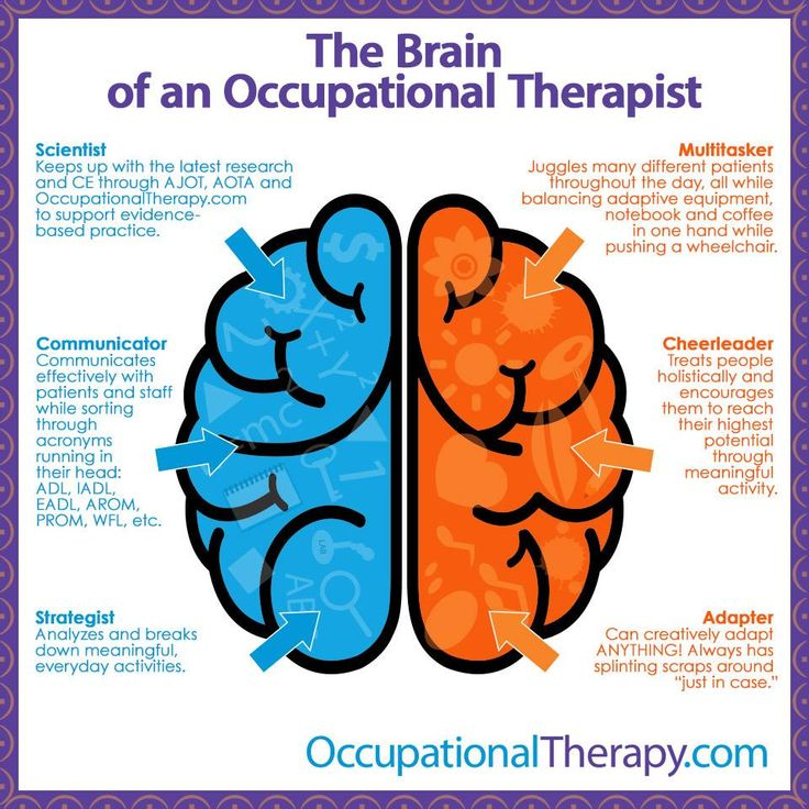 The Brain of an Occupational Therapist :)