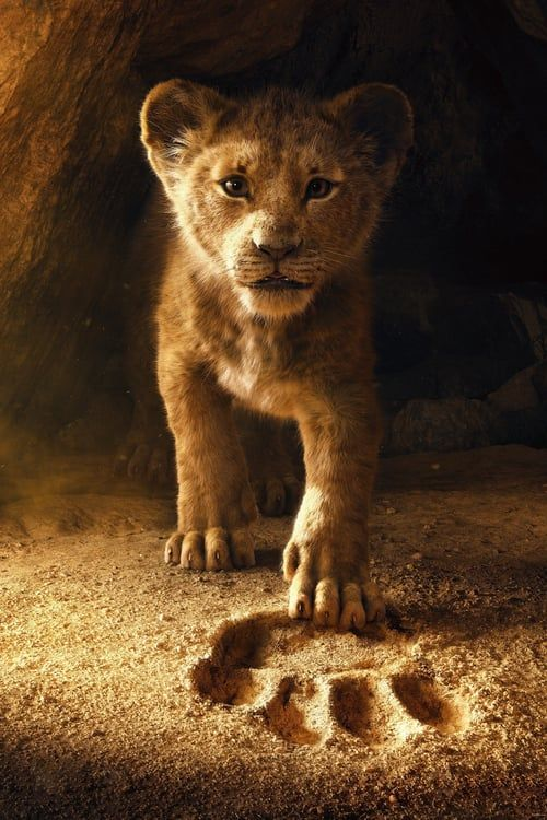 Free Download The Lion King Full Movie Streaming Online