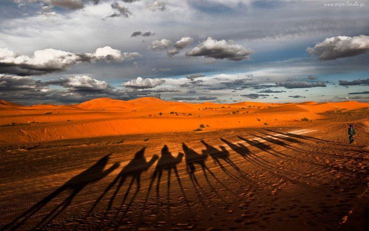Pustynia, Cień, Wielbłądów, Góry, Chmury