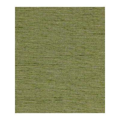 Shop Robert Allen Plain Elegance Apple II Fabric at onlinefabricstore.net for $16.5/ Yard. Best Price & Service.